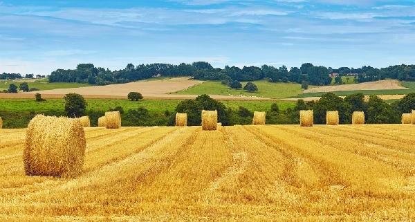agriculteurs-:-les-subventions-europeennes,-avec-ou-sans-tva-?