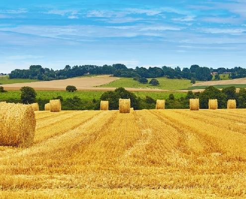 benefices-agricoles-:-3-(nouvelles)-mesures-a-connaitre…