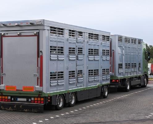 agriculteurs-:-des-abattoirs-bientot…-mobiles-?
