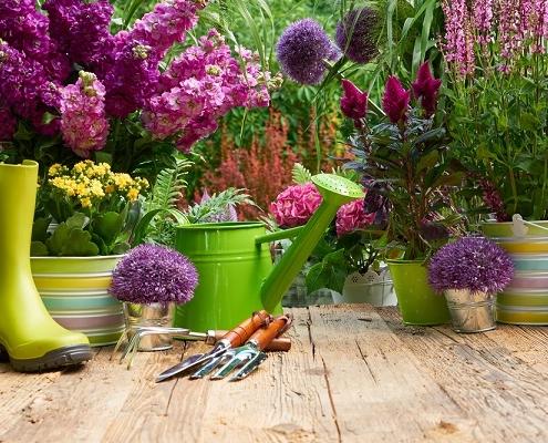 revenus-fonciers-:-deduire-les-travaux-de-jardinage-?